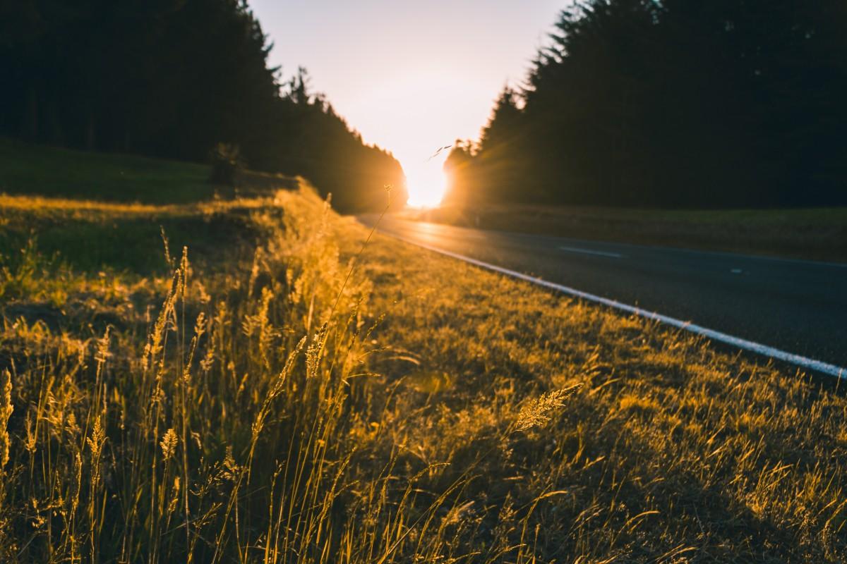 ¿Conoces la manera perfecta de GANAR DINERO gracias al sol?